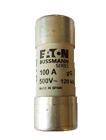 OmniPower Fuse 100A 22 x 58