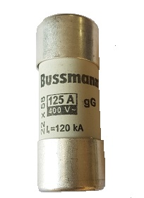 Fuses 125A Omnipower battery fuse, to be inserted into fuse holder OPFHCH221D  SegenSolar's recommendation is that batteries are fused on both poles.